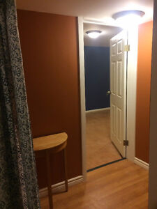 Bright, Spacious, Newly Reno'd Bsmt Suite