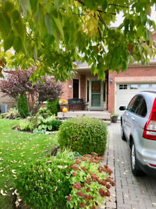 Fully Detached Bungalow Condo
