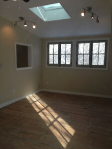 BEAUTIFUL ONE BEDROOM LOFT/CARRIAGE HOUSE IN DOWNTOWN PARIS.