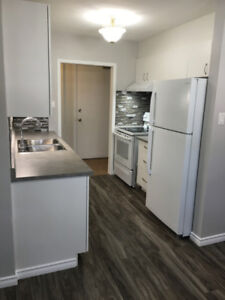 Large fully renovated 3 bedroom apartment for rent