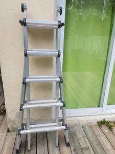 Portable extendable ladder