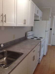 Downtown Fenelon Falls - All inclusive 1 Bedroom Apartment Kawartha Lakes Peterborough Area image 2