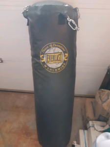Everlast Heavy Bag