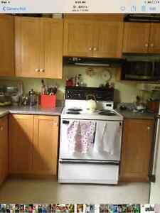 Kitchen cabinets and countertop St. John's Newfoundland image 2