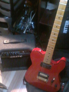 Guitar and amp for sale or trade for reptile