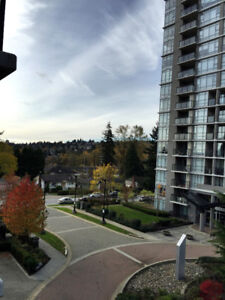 Apt for rent in Coquitlam west