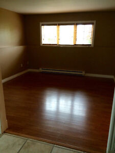 Two bedroom Basement Apartment in Goulds.