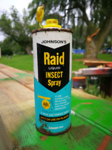 Older Raid Insect Spray Can