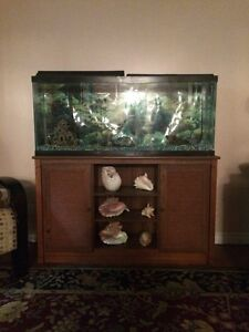 Fish Tank, Stand and Accessories Cambridge Kitchener Area image 1