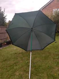 Carp fishing umbrella