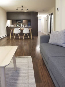 1 bedroom - St Henri - furnished - all appliances- all inclusive
