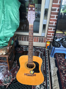 washburn d101,acoustic guitar,stand and case