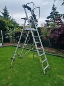 Telescopic platform ladders