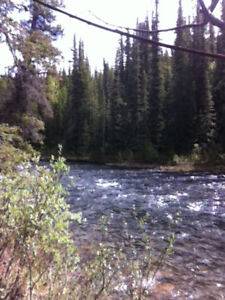 Placer Mining Claim: GOLDEN DRAGON AT MCDAME $15,000