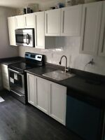 Beautiful Newly Renovated 2 Bedroom - Walking Distance to Pier 4