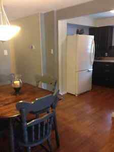 Beautiful 3+1 Bedroom House in Forest Hill Kitchener / Waterloo Kitchener Area image 10