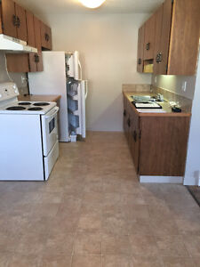 Clean and Bright apartment available November 1st