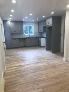 5 1/2 for rent Ville Emard  (Fully Renovated)