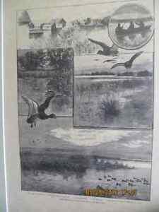 Long Point Company Hunting Print