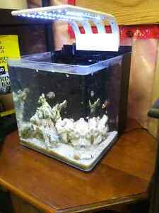 8 Gallon Cadlights Nano Tank