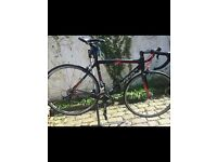 Willier Triestina carbon road bike