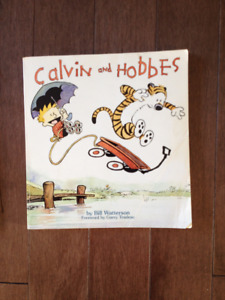 Calvin and Hobbes, Far Side, and Bloom county