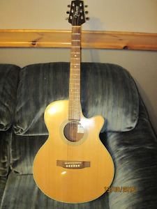 Takamine G series Acoustic / Electric Guitar