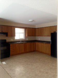 Nice 3 bed home - Available Feb. 15th Cambridge Kitchener Area image 2