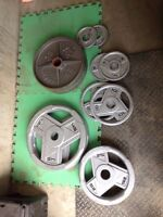 245 lbs Olympic Steel Weights, 2 inch Hole