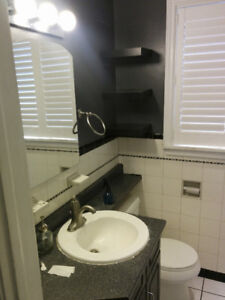 2x Toilets from house - free
