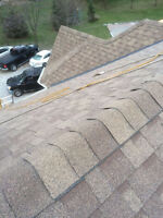Professional & Best Price Roofing Service, Promotion Now