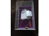 Guinea pig cage and accessories for sale