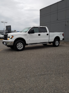Low Mileage Ford F-150 Crew Cab 4X4