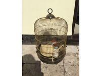 Bird cadge