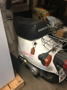 Honda Spree scooter
