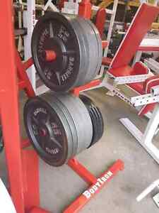 600 LBS IN OLYMPIC PLATES