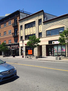 FURNISHED/QUALITY/ CLEAN/ QUIET / 1 BED .AND NEAR DOWNTOWN Gatineau Ottawa / Gatineau Area image 2