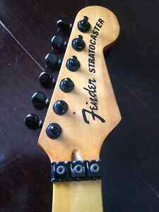 Strat style project neck