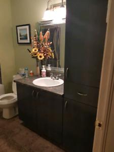 Meubles et accessoires pour salle de bain