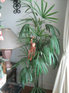 7 ft Palm Tree ( Looks Real)--$125.
