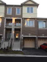 House for Rent in Brampton *****BRAND NEW*****