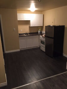Newly Renovated 1-Bedroom Apartment