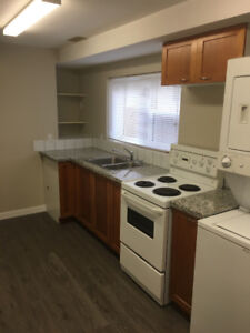 Looking for Mature Tenant(s) for New Basement Suite