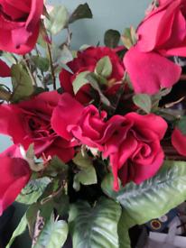 Beautiful large display of red velvet roses