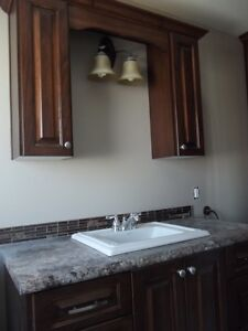 Bathroom and/or Laundry Cabinets/Vanities/Bdrm Storage Solutions