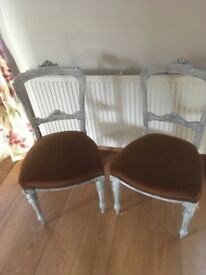French Louis chairs