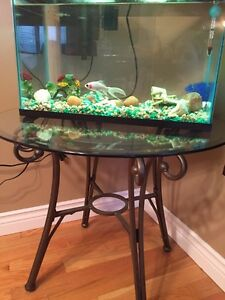 Fish tank and accessories!