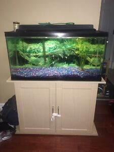 24 gallon fish tank comes with everything you need