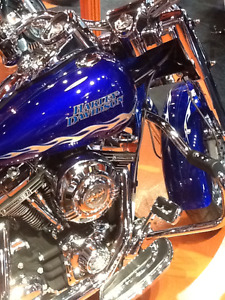 Stunning 2007 HD Road King 110 CVO