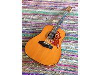 12 string acoustic Rio Grande EKO